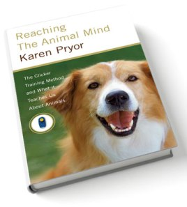 Book Cover for Reaching the Animal Mind