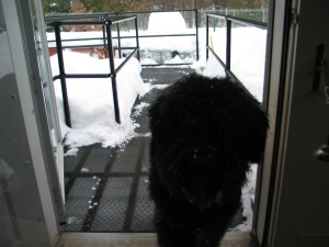Can we GO yet? Ive already sampled the snow, and its delicious.