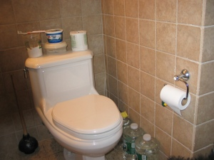 Toilet training setup