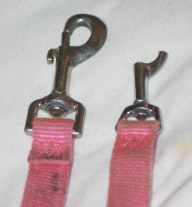 Broken clasp on pink service-dog leash