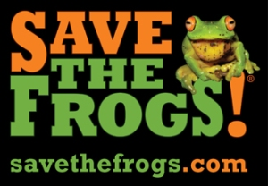 Logo for Save the Frogs! Black rectangle with the words Save the Frogs! in bright green and orange. There is a photo of an actual bright green frog with huge bulging orange eyes and a yellow tongue sticking out sitting on the ess and exclamation point. Underneath it says savethefrogs.com.