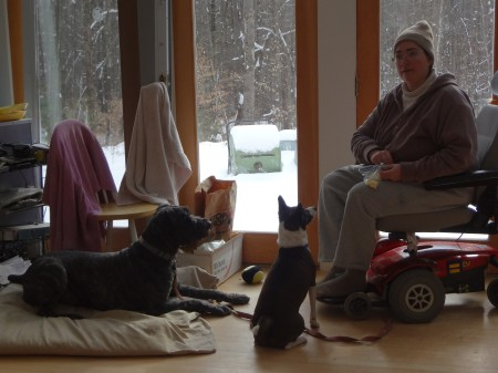 Mina sits facing Sharon. Barnum lies on his mat. Both dogs are looking up at Sharons face.